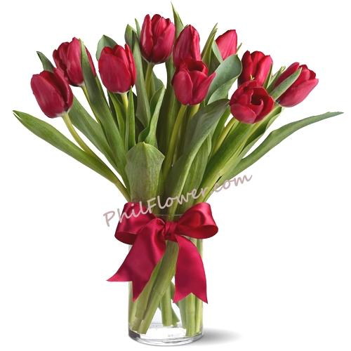 Send 1 Dozen Fresh Holland Red Tulips In Vase To Philippines